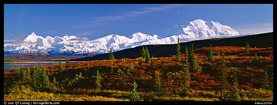 Tundra landscape with Mount McKinley. Denali  National Park (color)