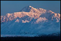 Denali, winter sunrise. Denali National Park, Alaska, USA.
