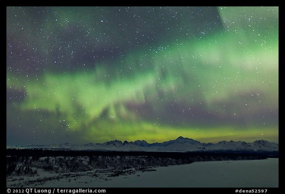 Aurora and stars above Alaska range. Denali National Park, Alaska, USA.