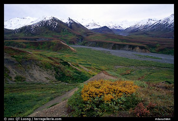 Alaska Range from Eielson. Denali National Park (color)