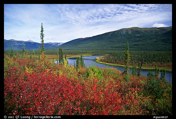 Alatna River valley near Circle Lake. Gates of the Arctic National Park (color)