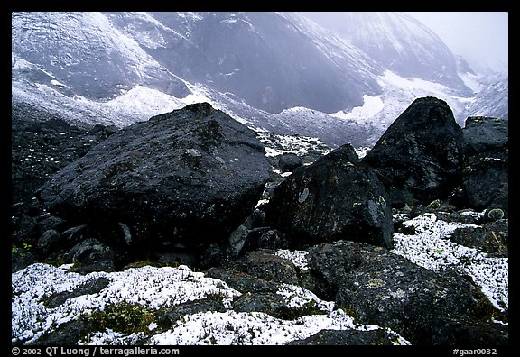Boulders at the base of Arrigetch Peaks. Gates of the Arctic National Park (color)