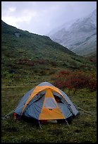 Camping in Arrigetch Valley. Gates of the Arctic National Park, Alaska (color)