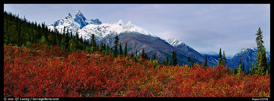 Taiga landscape in the fall. Gates of the Arctic National Park (color)