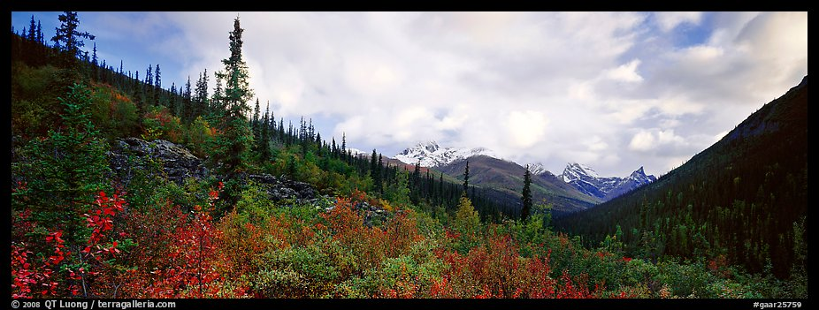Boreal forest landscape. Gates of the Arctic National Park (color)