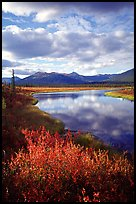Alatna River valley near Circle Lake, evening. Gates of the Arctic National Park, Alaska, USA.