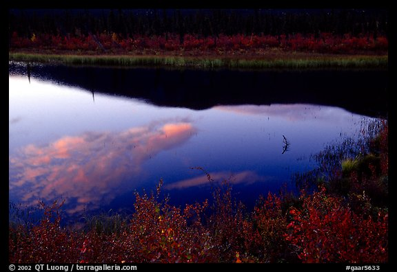 Alatna River reflections, sunset. Gates of the Arctic National Park (color)
