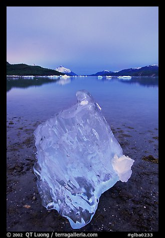 Translucent Iceberg near Mc Bride glacier, Muir inlet. Glacier Bay National Park (color)