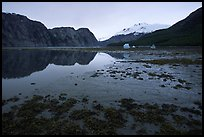 Mud flats above White Thunder ridge, Muir inlet. Glacier Bay National Park, Alaska, USA. (color)