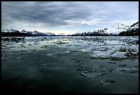 Ice-choked waters, West arm. Glacier Bay National Park ( color)