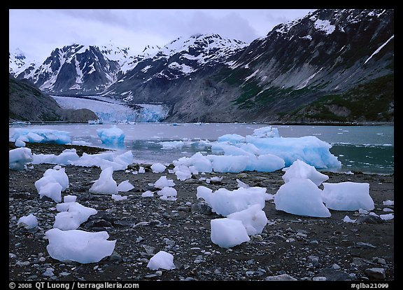 Beached icebergs and McBride Glacier. Glacier Bay National Park (color)