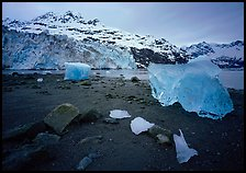 Beach, translucent iceberg, Lamplugh Glacier. Glacier Bay National Park, Alaska, USA. (color)