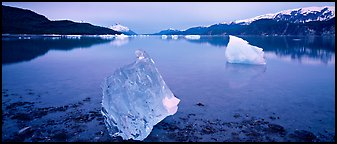 Transluscent iceberg at dawn. Glacier Bay National Park (Panoramic color)