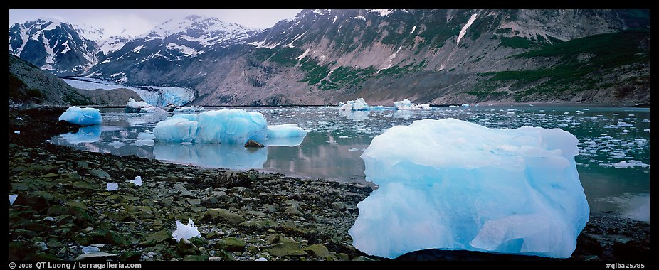 Glacial scenery with icebergs and glacier. Glacier Bay National Park (color)