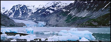 Coastal scenery with icebergs and tidewater glacier. Glacier Bay National Park (Panoramic color)
