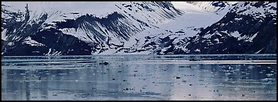 Snowy slopes reflected in ice-chocked waters. Glacier Bay National Park (Panoramic color)