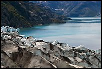 Lamplugh glacier and turquoise bay waters. Glacier Bay National Park, Alaska, USA.