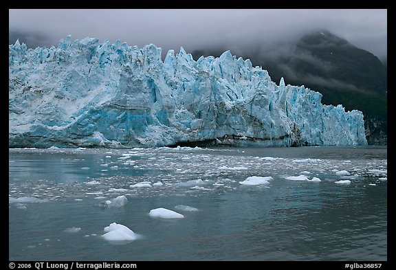 Picture Photo Icebergs And Blue Ice Face Of Margerie Glacier Glacier Bay National Park