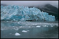 Icebergs and blue ice face of Margerie Glacier. Glacier Bay National Park, Alaska, USA.