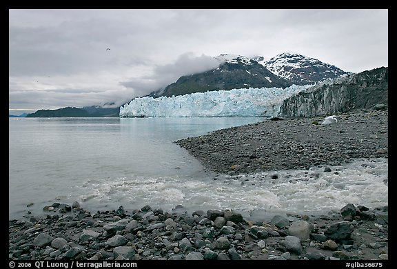 Stream flowing into Tarr Inlet, and Margerie Glacier. Glacier Bay National Park (color)