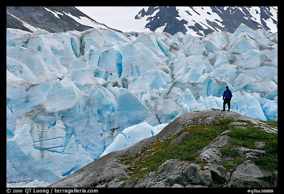 Hiker on a hill below Reid Glacier. Glacier Bay National Park (color)