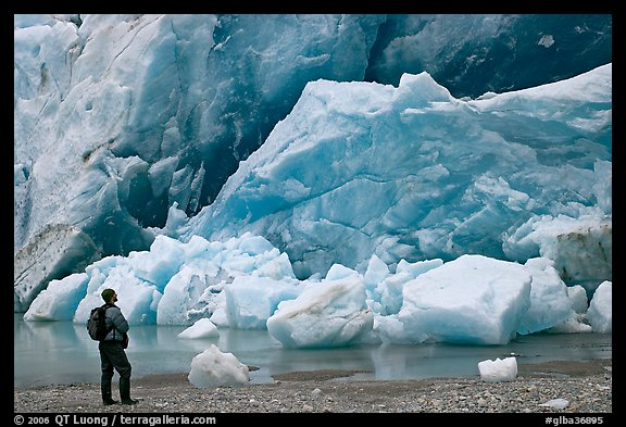 Hiker looking at ice wall at the front of Reid Glacier. Glacier Bay National Park (color)
