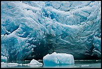 Iceberg and blue ice cave at the base of Reid Glacier. Glacier Bay National Park, Alaska, USA.