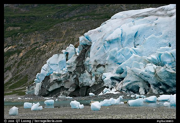 Stranded icebergs on beach and Reid Glacier terminus. Glacier Bay National Park (color)