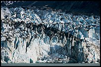 Tidewater ice front of Lamplugh glacier. Glacier Bay National Park, Alaska, USA. (color)