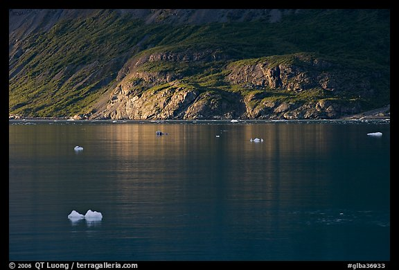 Icebergs and spot of sunlight on slopes around Tarr Inlet. Glacier Bay National Park (color)