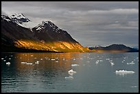 Tarr Inlet and icebergs with the last light of sunset. Glacier Bay National Park, Alaska, USA.