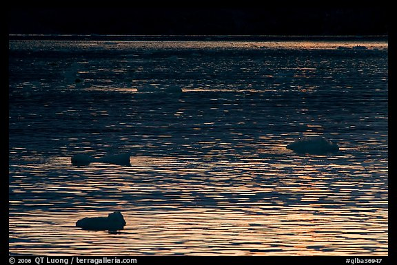 Ripples and icebergs at sunset, Tarr Inlet. Glacier Bay National Park (color)
