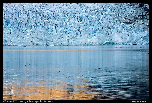 Golden reflections and blue ice of Margerie Glacier. Glacier Bay National Park (color)