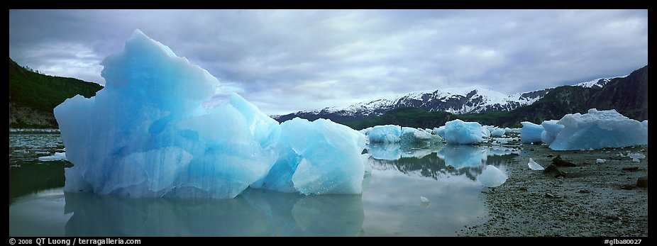 Blue beached icebergs. Glacier Bay National Park (color)