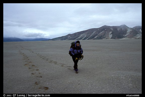 Backpacker hikes in sand-like ash, Valley of Ten Thousand smokes. Katmai National Park, Alaska (color)