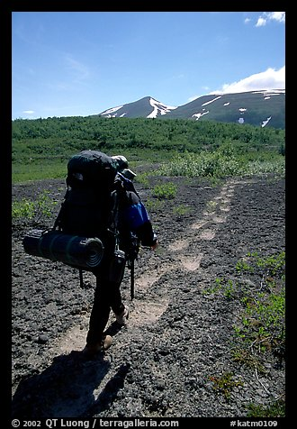 Backpacker follow bear tracks, Valley of Ten Thousand smokes. Katmai National Park, Alaska (color)