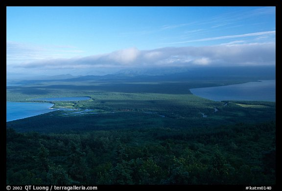 Brooks camp and river seen from Dumpling mountain in summer. Katmai National Park (color)