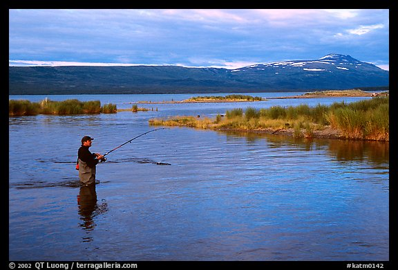 Man fishing for salmon in the Brooks river. Katmai National Park (color)