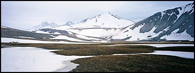 Lichens, snow patches, and snowy peaks. Katmai National Park (Panoramic color)