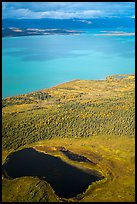 Aerial View of pond, tundra and Naknek Lake in autumn. Katmai National Park ( color)