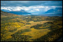 Aerial View of meadows, forest, and Naknek Lake. Katmai National Park ( color)