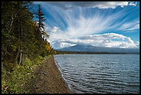 Shore of Lake Brooks. Katmai National Park ( color)