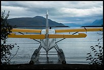 Floatplane facing Naknek Lake. Katmai National Park ( color)