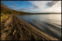 Huge bear footprints on shore of Naknek Lake. Katmai National Park ( color)