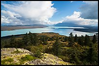 High view of Naknek Lake from treeline. Katmai National Park ( color)