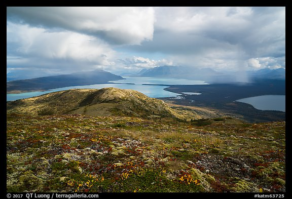 Tundra above lakes and distant rain showers. Katmai National Park (color)