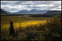 Shaft of light over tundra meadow downstream of Valley of Ten Thousand Smokes. Katmai National Park ( color)