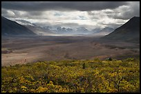 Valley of Ten Thousand Smokes in autumn. Katmai National Park ( color)