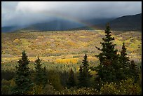 Rainbow over valley in autumn foliage. Katmai National Park ( color)