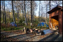 Tents, fire ring, and shelter, Brooks Camp campground. Katmai National Park ( color)